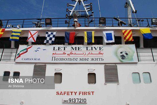"""تصویر فک خزری روی کشتیهای دریای خزر با شعار """"بگذار زندگی کنم"""""""