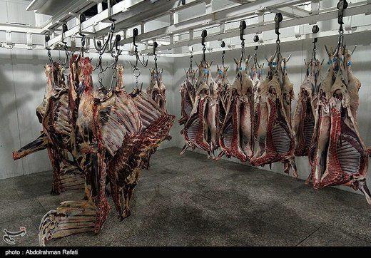 چرا گوشت گوساله با سه برابر قیمت واقعی به دست مردم میرسد؟