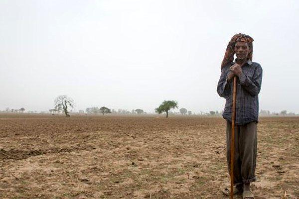 ببینید کاشت 350 میلیون درخت در یک روز