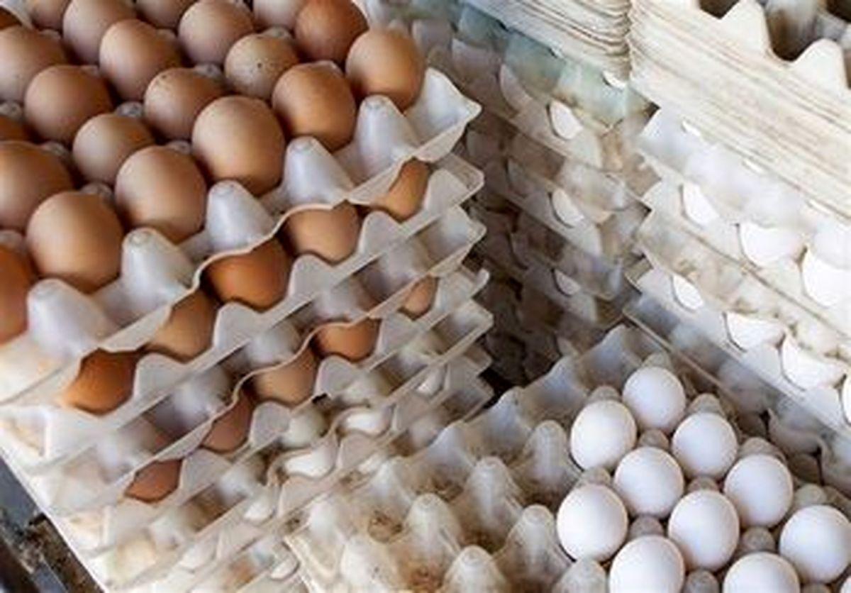 قیمت روز تخم مرغ در بازار (۹۹/۱۰/۲۱) + جدول
