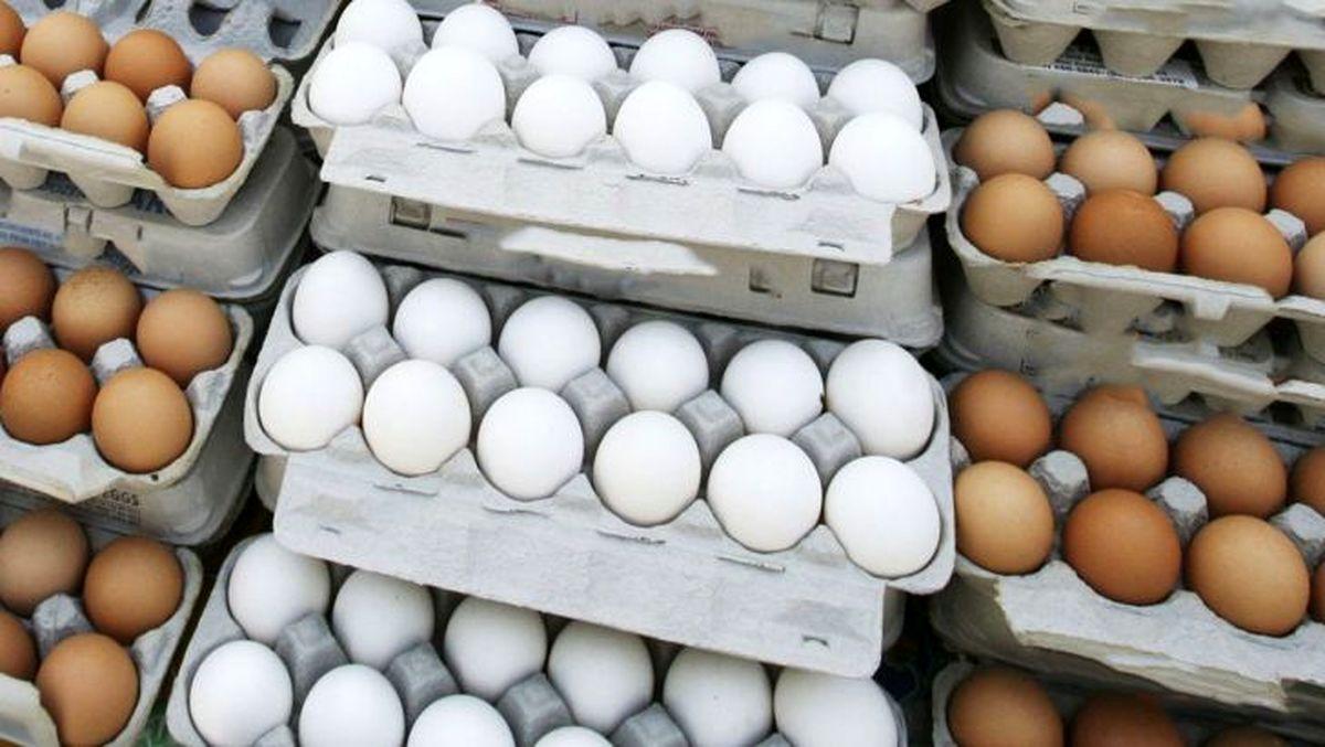 قیمت روز تخم مرغ در بازار (۹۹/۱۱/۲۷) + جدول