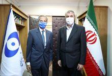 بیانیه مشترک ایران و آژانس؛ حاشیهسازان در بنبست
