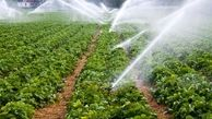 کشاورزان ایرانی گرانترین آب دنیا را مصرف میکنند
