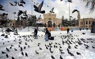 قبل از خرید تور استانبول بخوانید