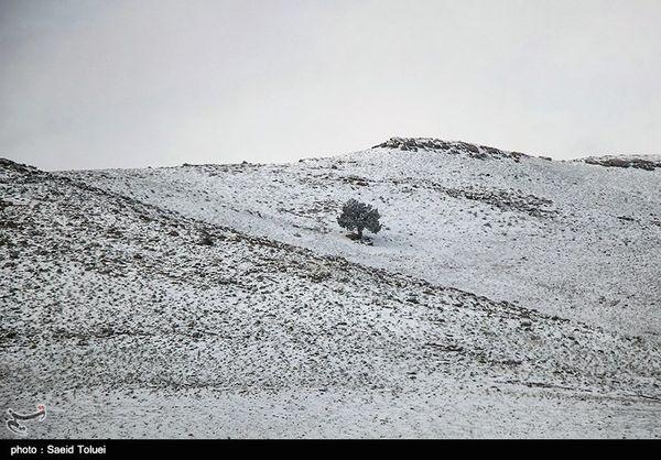 اصفهان  کاهش بیسابقه دما در 50 سال گذشته و بارش برف در اردستان